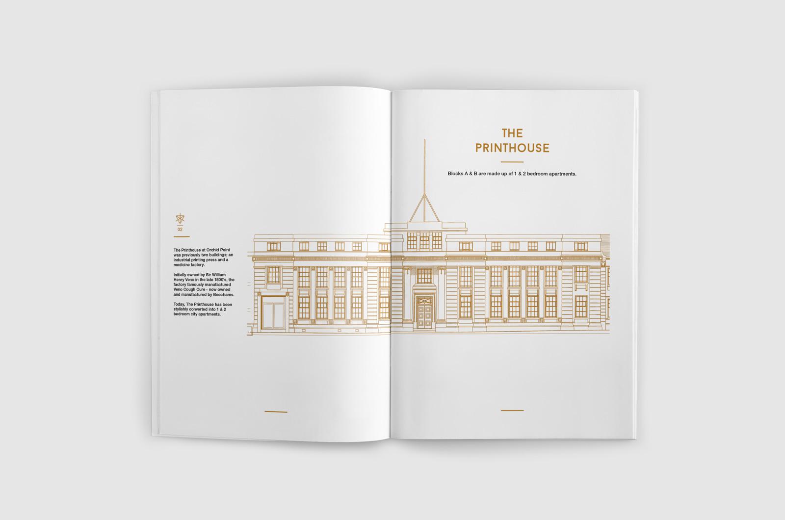 OPA Brochure 06